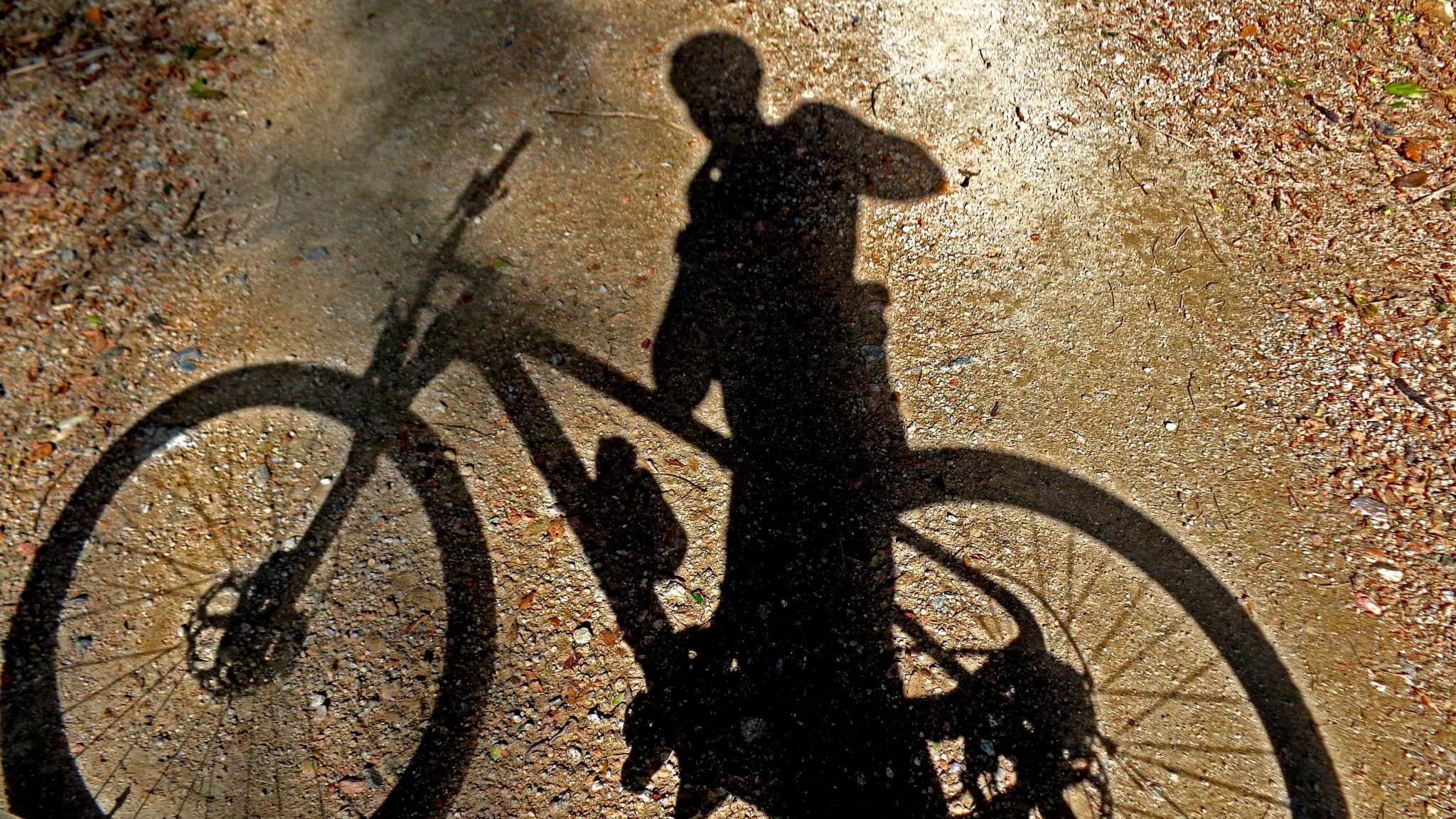 Schatten eines Fahrrads im Sonnenuntergang
